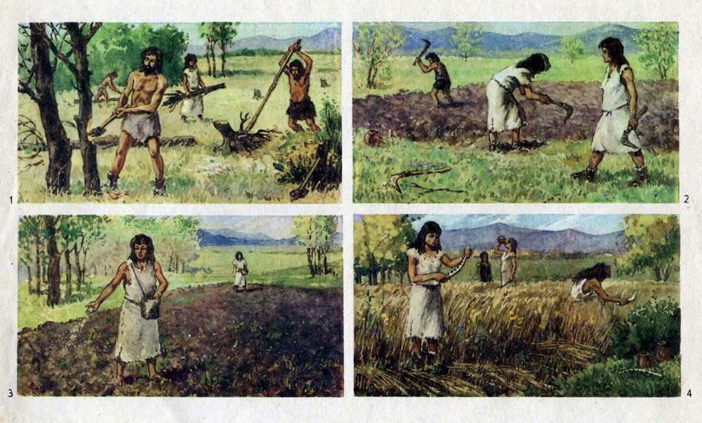 Древние фермеры